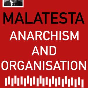 Errico Malatesta, 'Anarchism and Organisation'